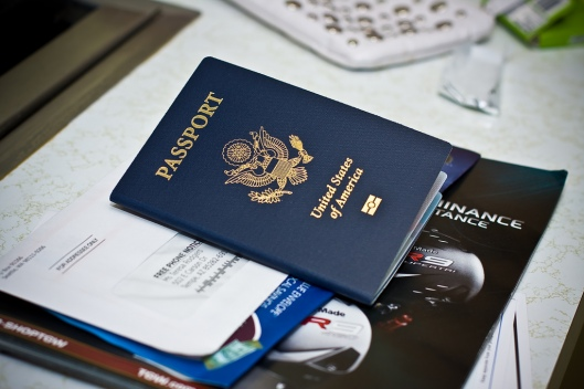 Ticket passport